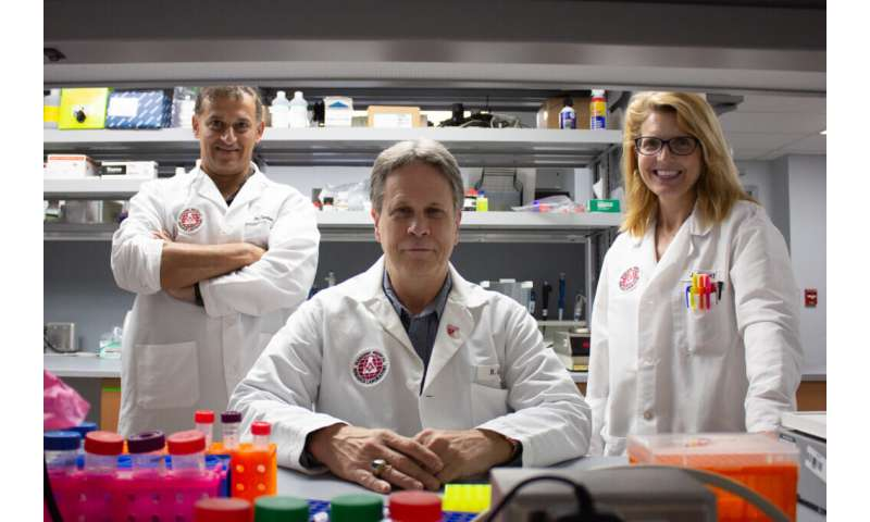 Team publishes study on enhancements that mediate maturation of heart stem cells