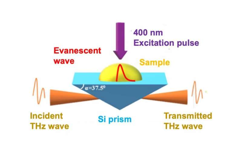 Terahertz waves reveal hidden processes in ultrafast artificial photosynthesis