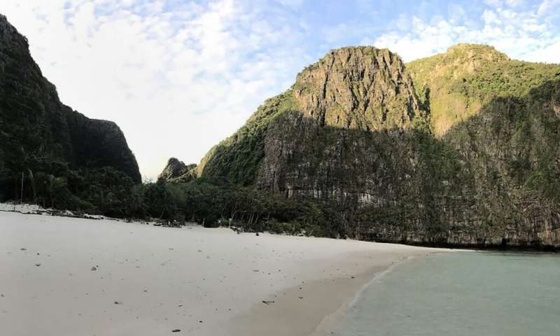 Thai authorities distributed pictures six months after Maya Bay's closure showing a vast improvement to the ecology
