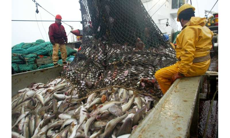 EU cuts 2020 cod quotas for the Baltic