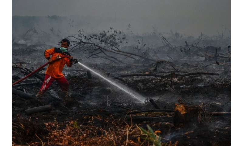 The fires are causing toxic smoke which is spreading across Southeast Asia