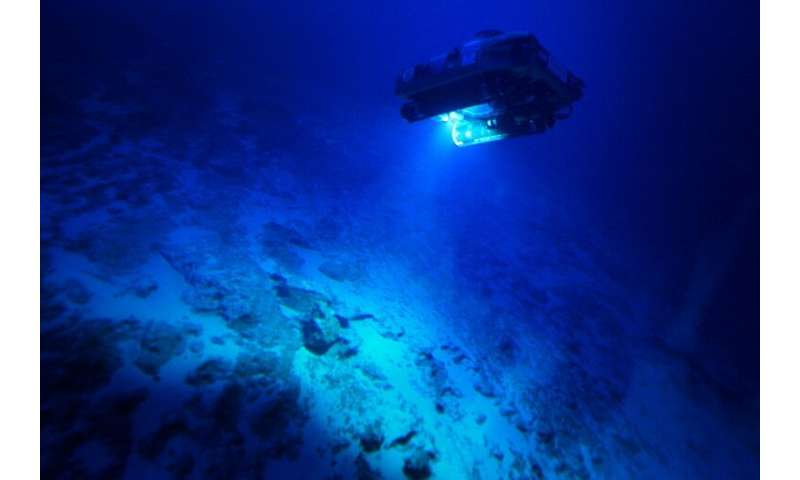 The First Descent expedition, led by British-based ocean research institute Nekton, is set to send submersibles as deep as 3,000