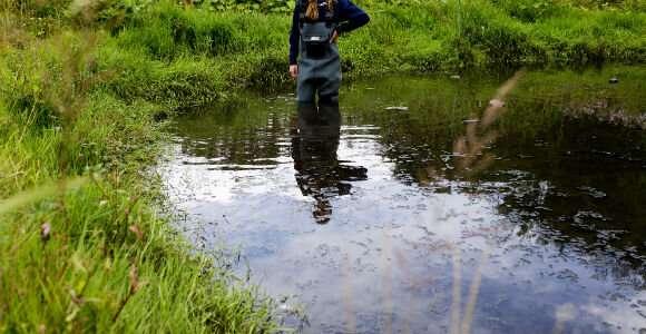 The global phosphorus crisis