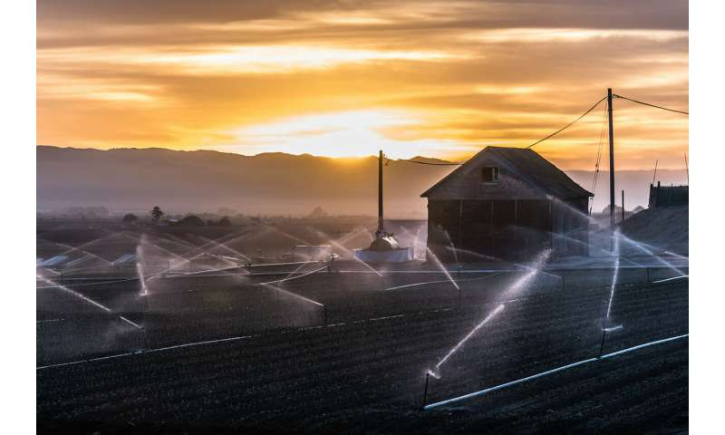 The global race for groundwater speeds up to feed agriculture's growing needs