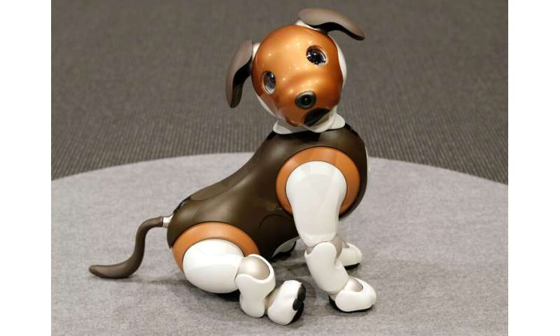"""The latest aibo model, which can also display """"emotions"""", was released in January last year and sales hit 20,000 in th"""