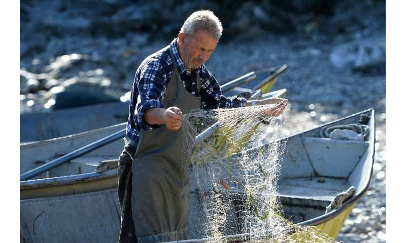 The livelihoods of honest fishermen area being hurt by poachers electrofishing in both Albania and Montenegro, locals say