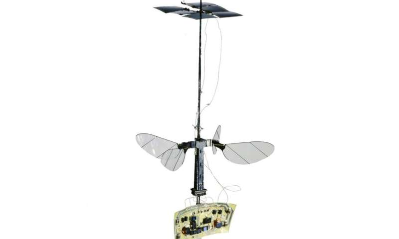 The RoboBee flies solo
