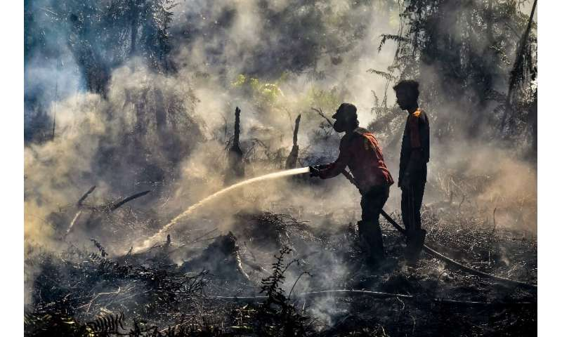 The smog regularly blankets parts of Southeast Asia during the dry season when burning is used to clear Indonesian land for palm