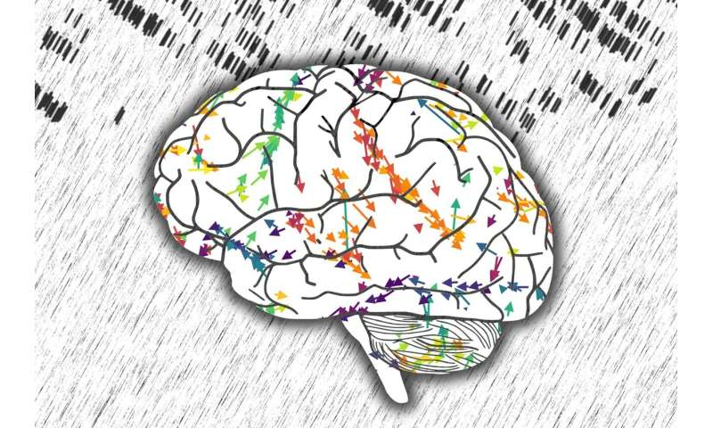The space-time fabric of brain networks