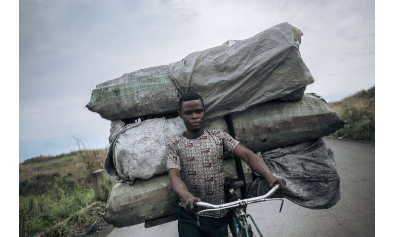 The trade in charcoal is worth millions of dollars and is attracting armed groups to the Goma area, threatening Virunga natural