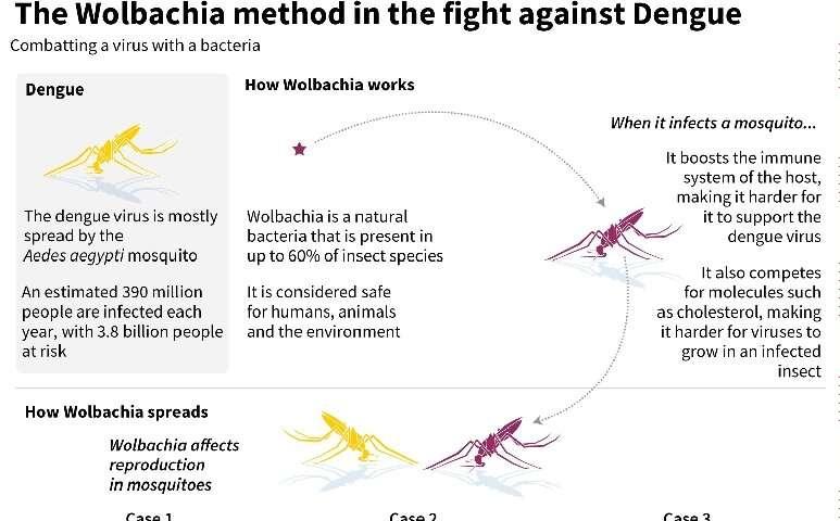 The Walbachia method