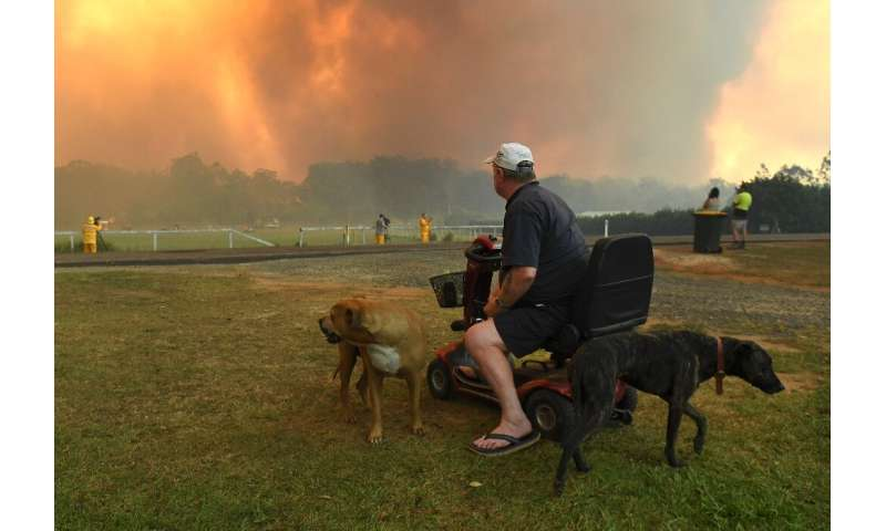 Thirteen of the more than 100 bushfires scarring the countryside were declared emergencies, with numerous towns under direct thr