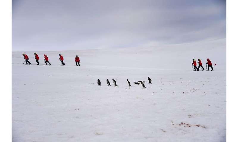 Tourists and Barbijo penguins (Pygoscelis antarcticus) are seen on Half Moon island, Antarctica