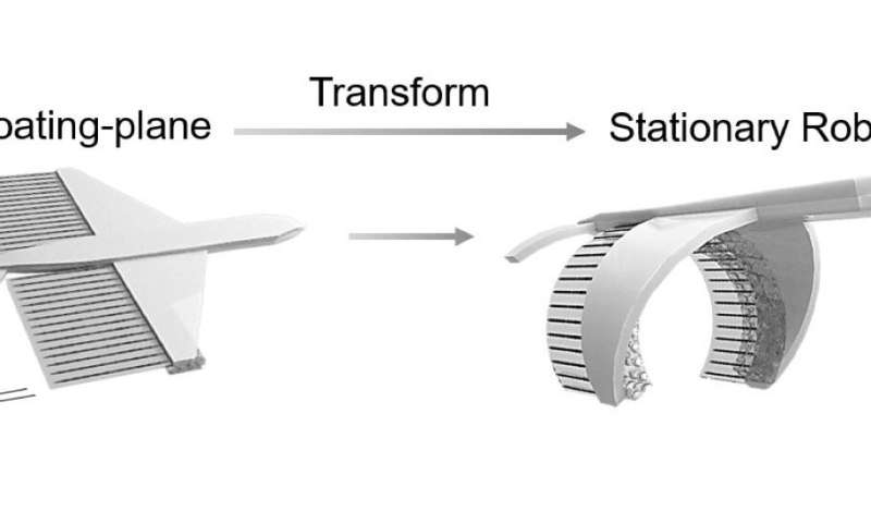 Toy transformers and real-life whales inspire biohybrid robot
