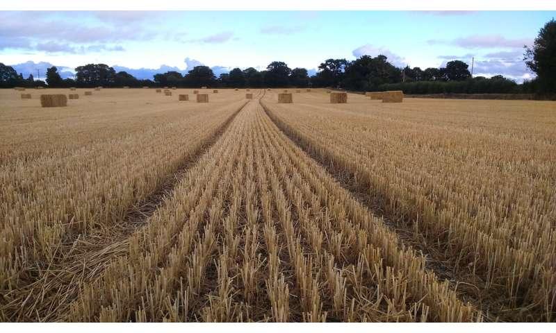 Transfer of EU powers leads to silent erosion of UK pesticide regulation