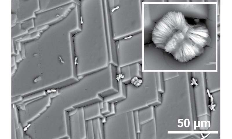 Treating solar cell materials reveals formation of unexpected microstructures