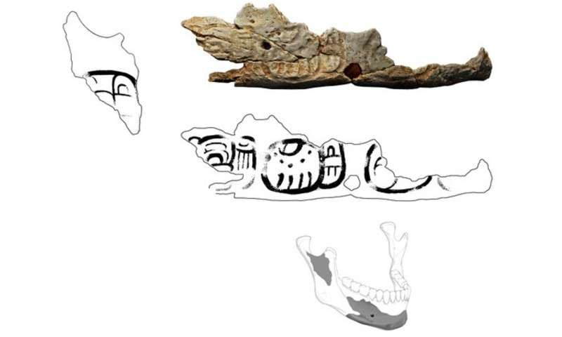 Trophies made from human skulls hint at regional conflicts around the time of Maya civilization's mysterious collapse