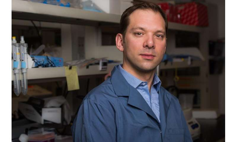 Turning 'junk' DNA into gold
