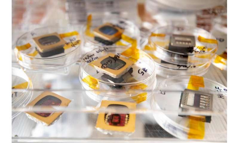 Tweaks behind the rebirth of nearly discarded organic solar technologies