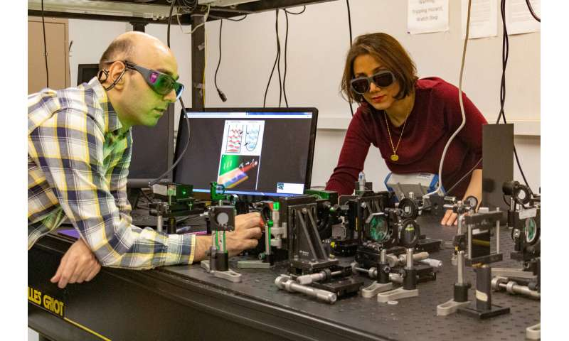 UCF researchers develop first sypersymmetric laser array