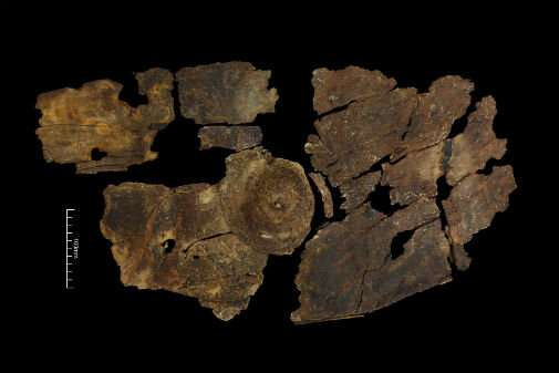 Unique Iron Age shield gives insight into prehistoric technology