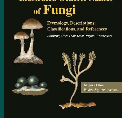 Unique mycology reference pairs genus descriptions with 1,000-plus original watercolors