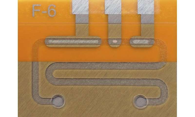 Using gene scissors to detect diseases