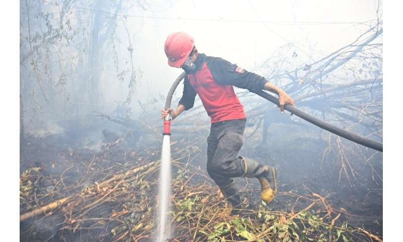 Vast blazes are ripping across the Indonesia's rainforests