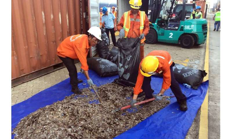 Vietnam confirmed the haul and also announced a separate seizure of 8.3 tonnes of pangolin scales from 'an African country' in t