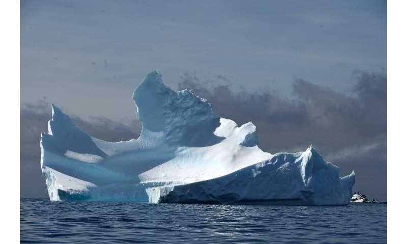 View of an iceberg on Half Moon island, Antarctica