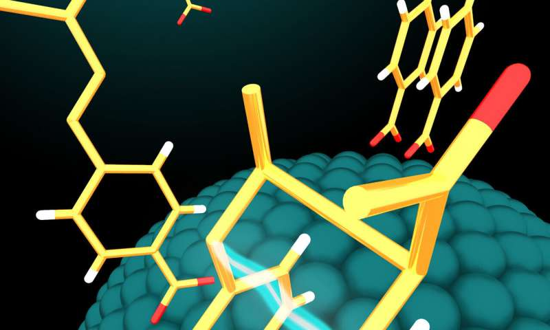 Visible light and nanoparticle catalysts produce desirable bioactive molecules