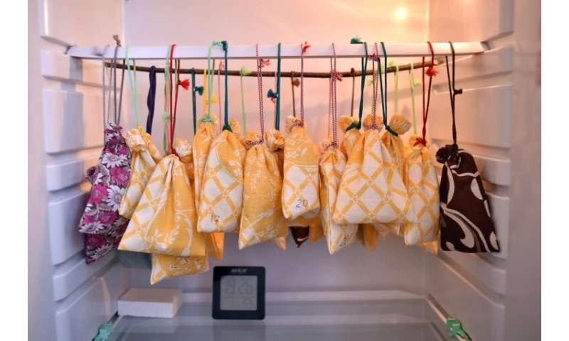 Volunteers at the Minsk rescue centre place the bats inside cloth bags and hang them up in a domestic fridge which offers the pe