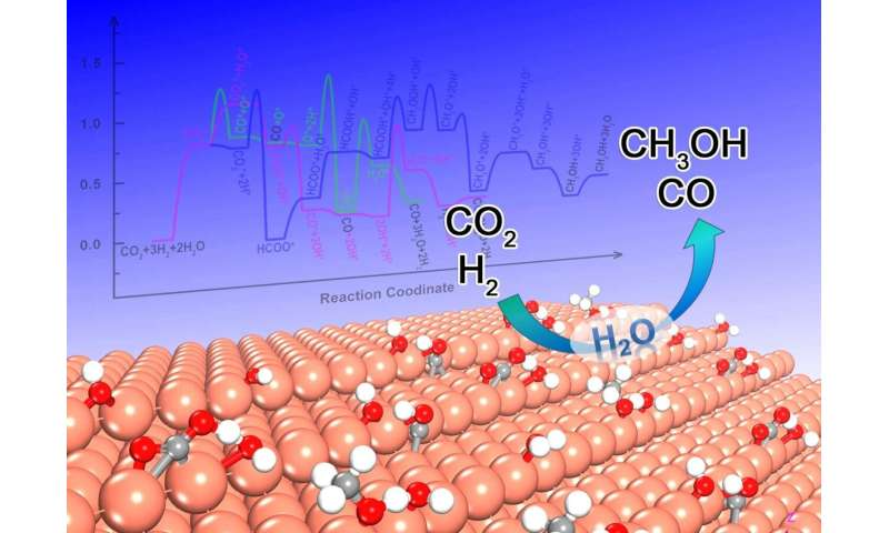Water could modulate the activity and selectivity of carbon dioxide reduction