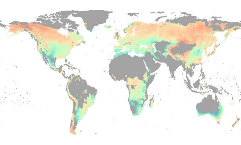 Water, not temperature, limits global forest growth as climate warms