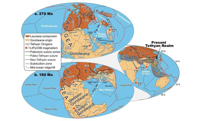 What drives plate tectonics?