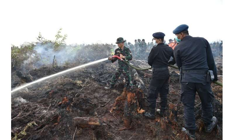 What it takes to put out forest fires