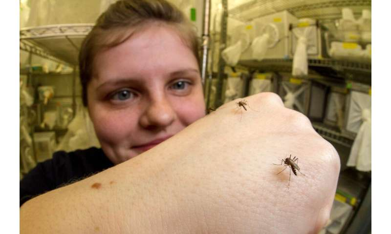 What makes mosquitoes avoid DEET? An answer in their legs