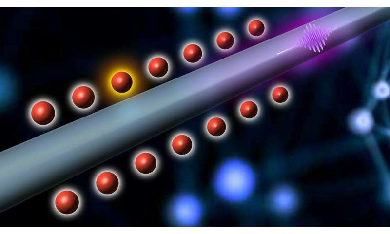 When cold atoms meet nano: a wired quantum node