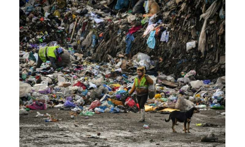 Whole families subsist from the income they make from recyclable waste that they pick from the rubbish heap