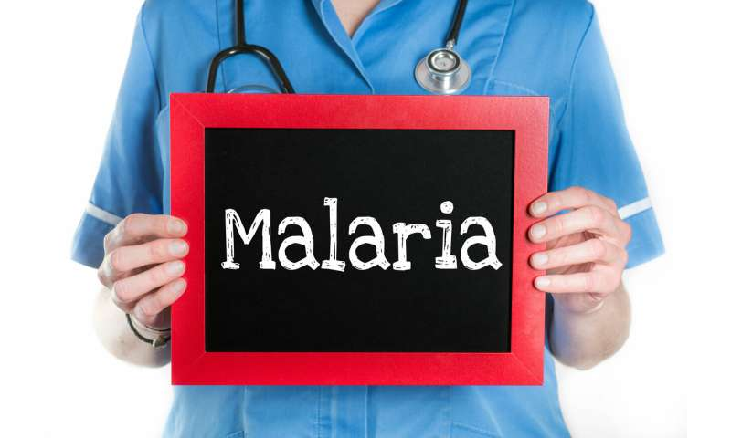 Why does malaria recur? How pieces of the puzzle are slowly being filled in