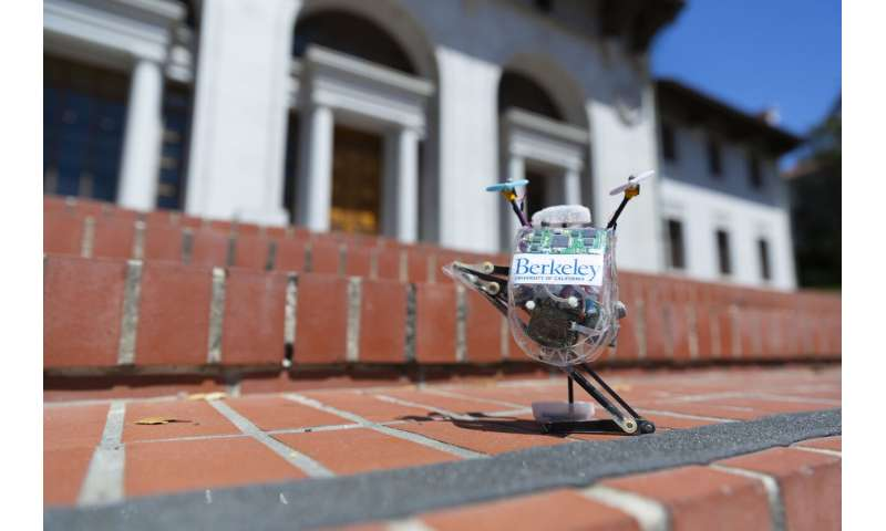 With a hop, a skip and a jump, high-flying robot leaps through obstacles with ease