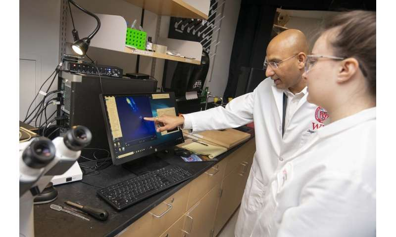 WPI biologist's discovery gives evolution clues and may affect drug interaction research