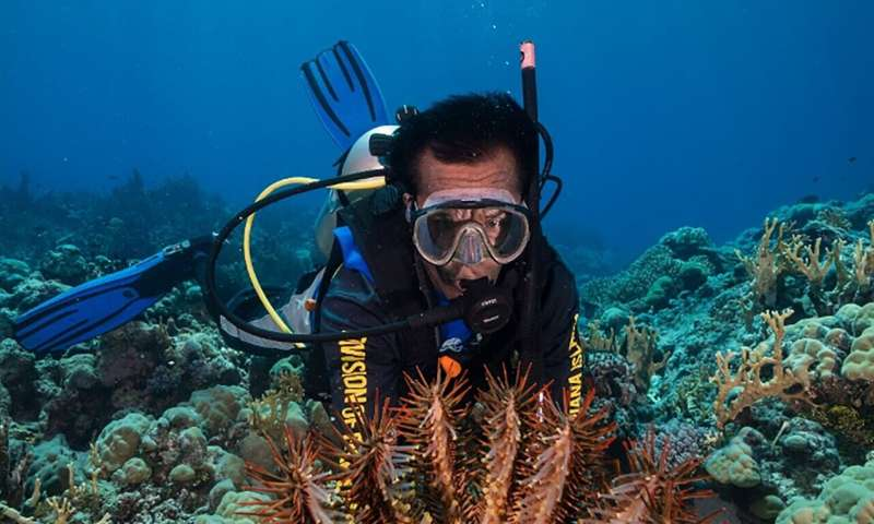 University of Guam: Two climate patterns predict coral bleaching months earlier