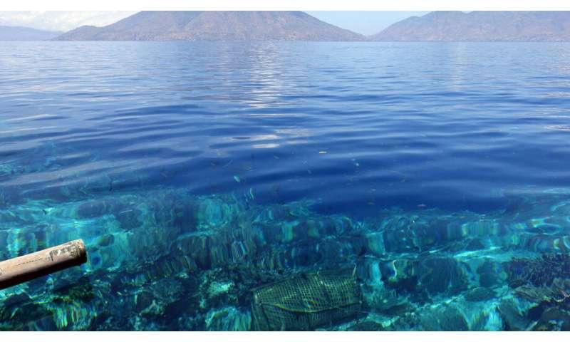 40,000 years of adapting to sea-level change on Alor Island