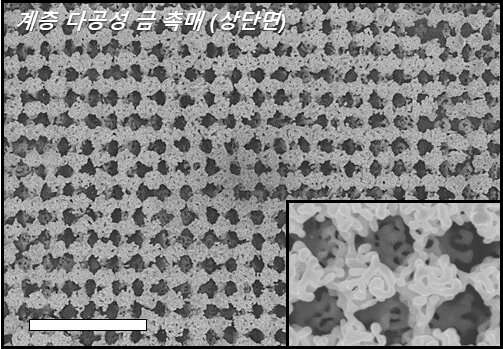3-D hierarchically porous nanostructured catalyst helps efficiently reduce CO2
