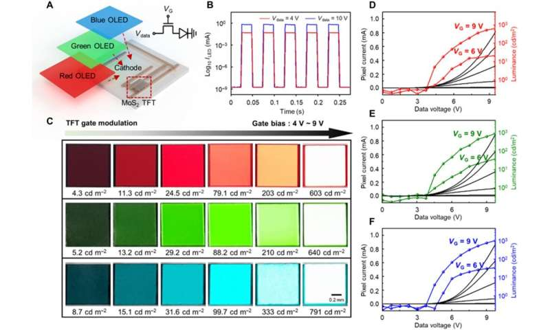 Active-matrix organic light-emitting diode display on human skin