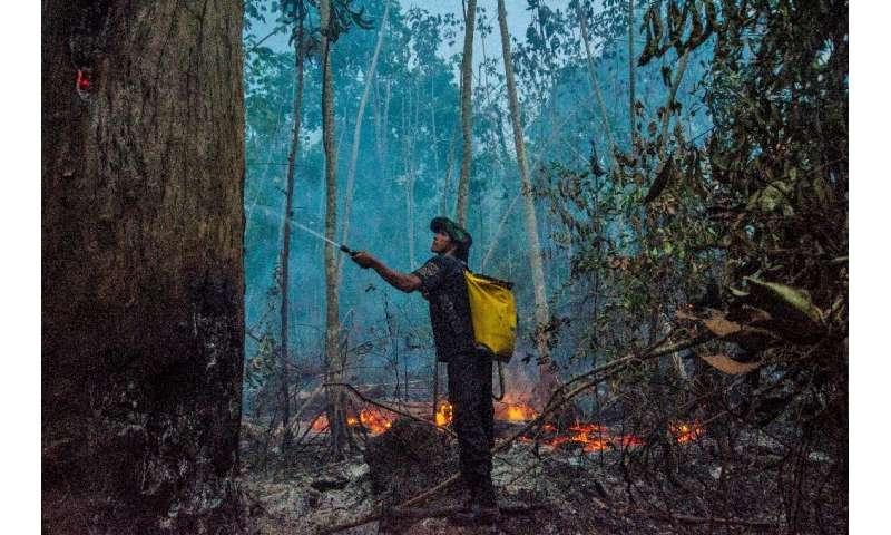 Un miembro de un grupo indígena combate un incendio forestal en Brasil, que ha experimentado un aumento en los incendios forestales durante el año pasado.
