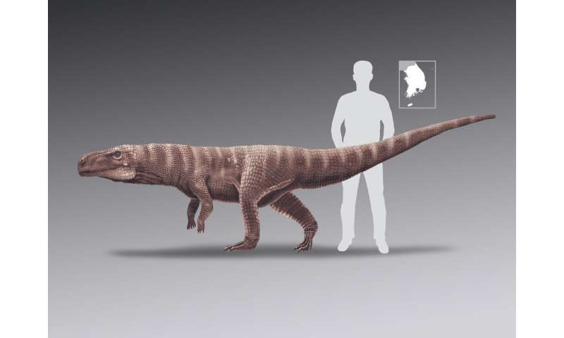 Ancient crocodiles walked on two legs like dinosaurs