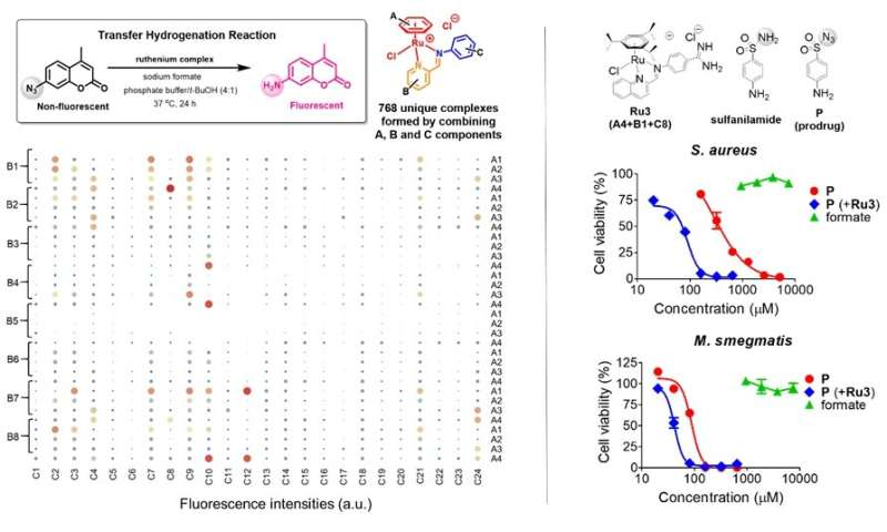 Antibacterial prodrug by targeting intracellular metabolite