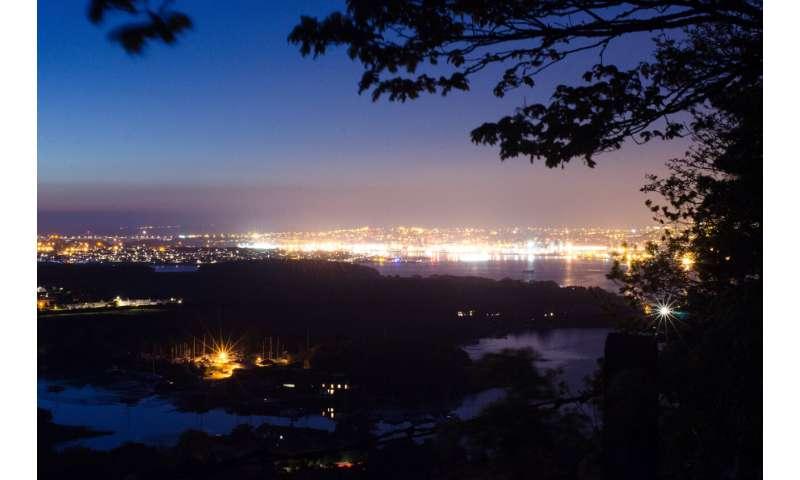 Artificial night sky poses serious threat to coastal species